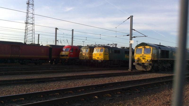 Photo of Trio of electrics stabled at Mossend Yard