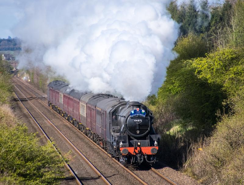 Homepage photo of 44871