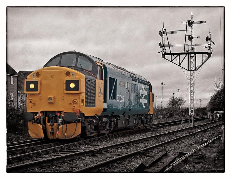 Homepage photo of 37025