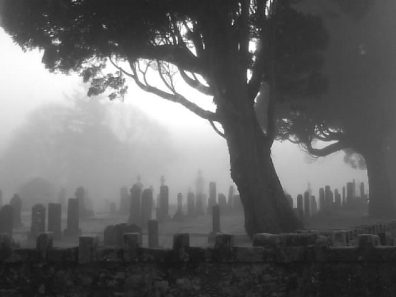 scot-rail.co.uk » Photo » Creepy graveyard