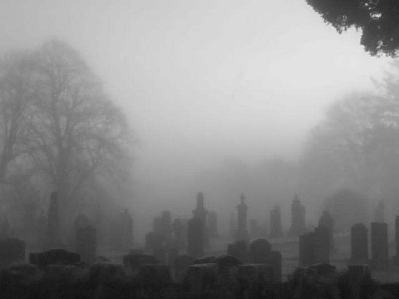 Some Misty Graveyard Shots….